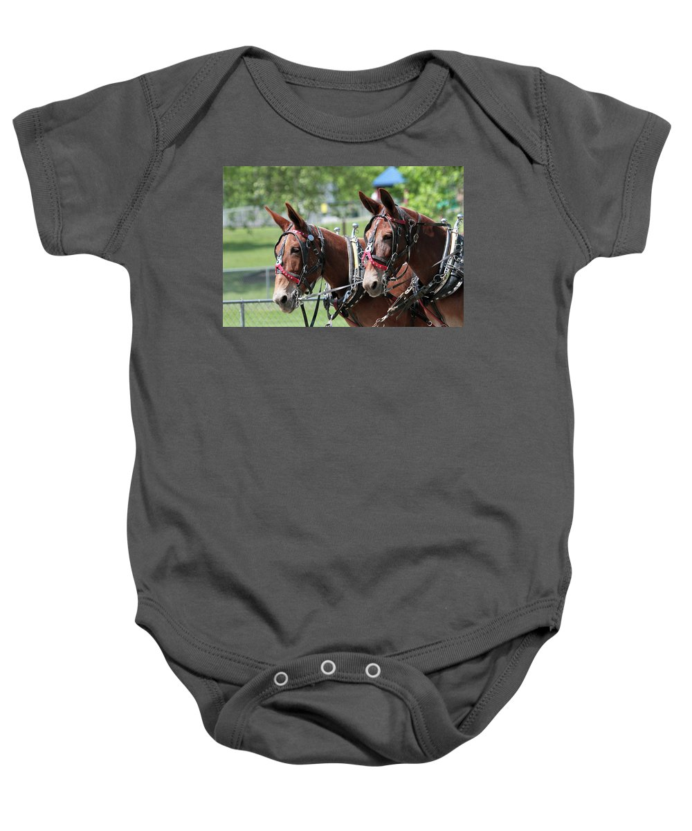 Mule Baby Onesie featuring the photograph Mules Day 2016 by Dwight Cook