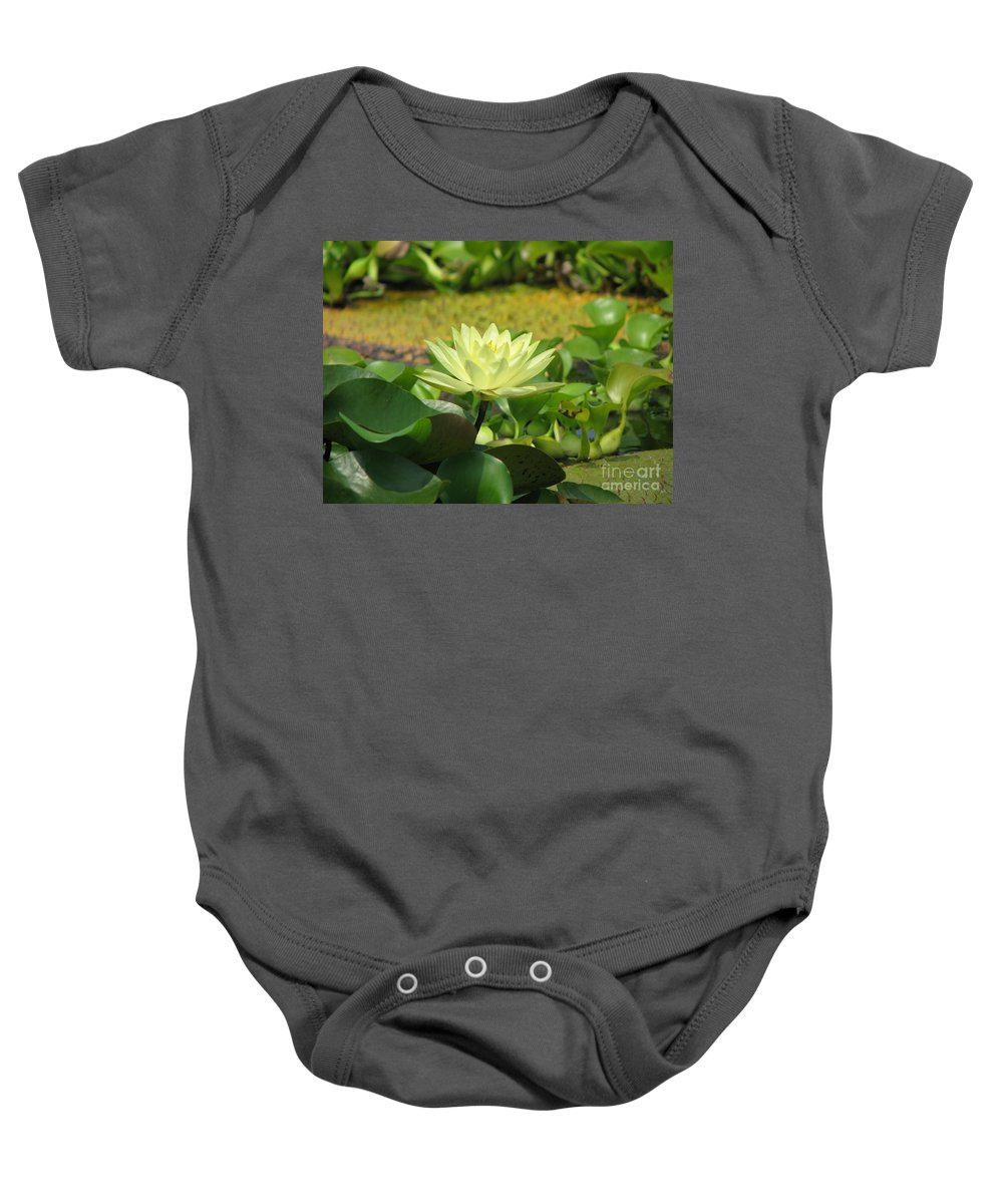 Nature Baby Onesie featuring the photograph Nature by Amanda Barcon