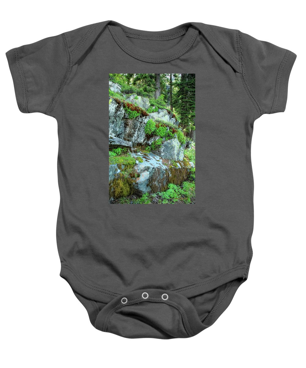 Nature Baby Onesie featuring the photograph Nature's Collage by Donna Blackhall