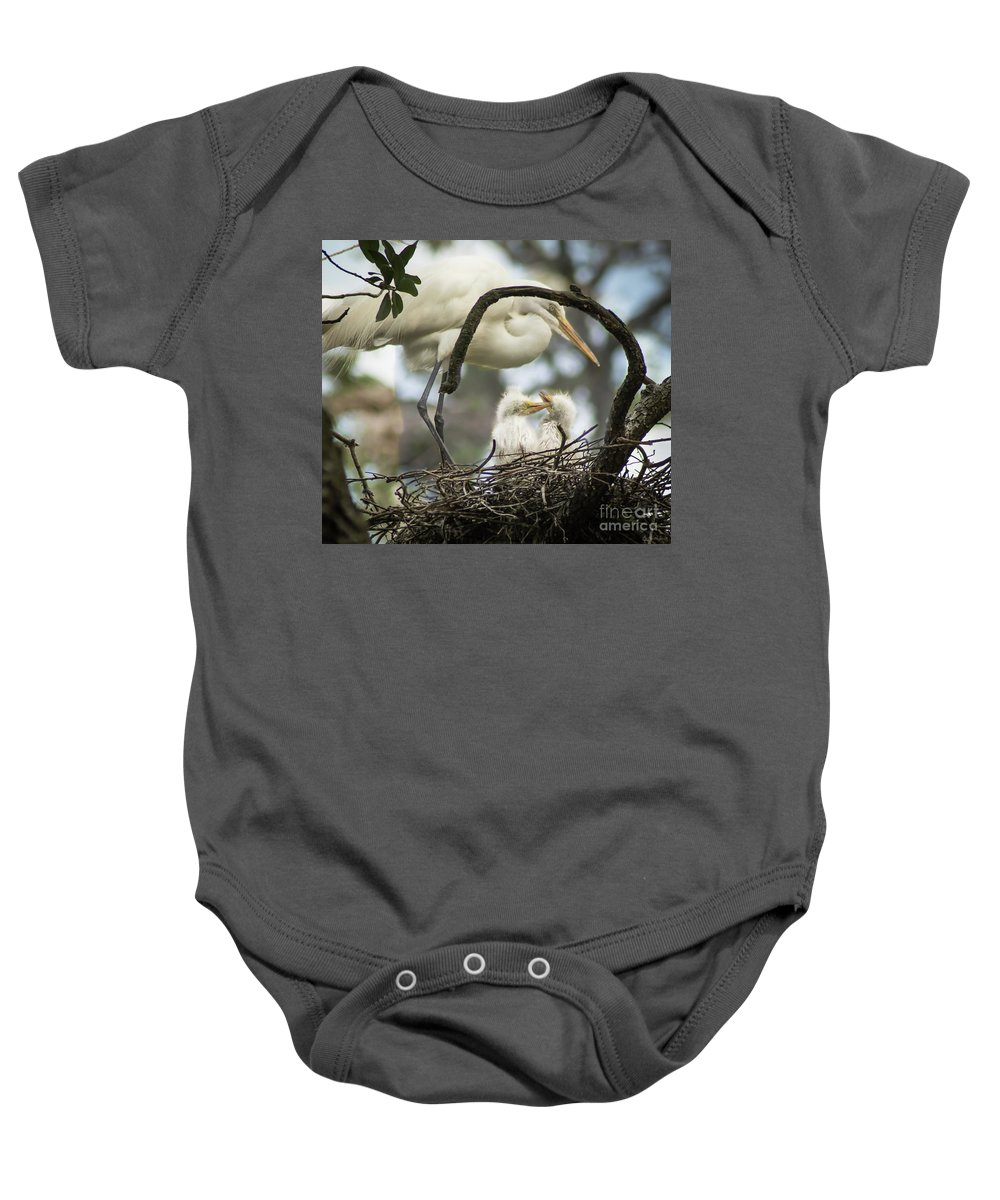 Nest Baby Onesie featuring the photograph Nesting Egret by Janal Koenig