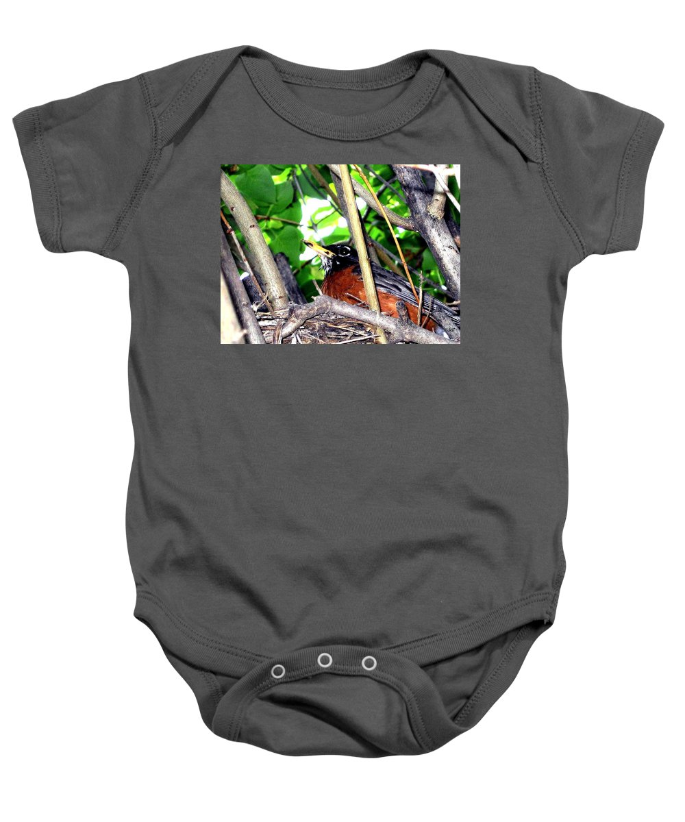 Robin Baby Onesie featuring the photograph Nesting Robin by Will Borden