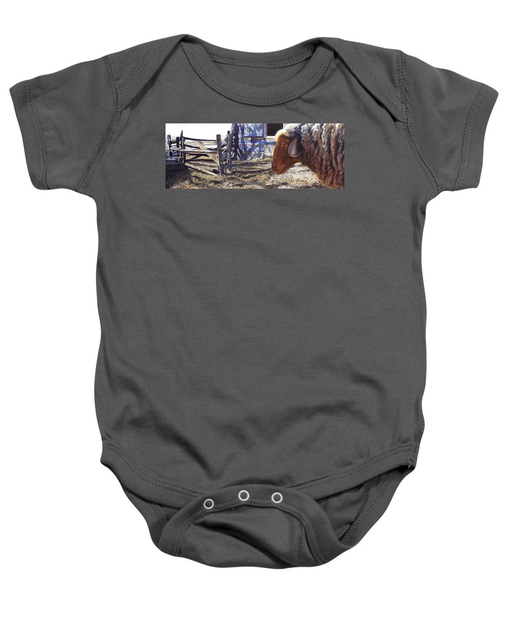 Farm Baby Onesie featuring the painting No Place Like Home by Denny Bond