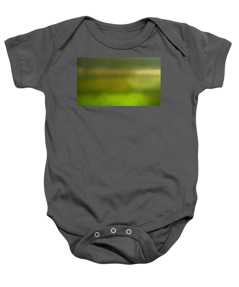 Abstract Baby Onesie featuring the photograph Obscured Garden Abstract by Thomas Morris