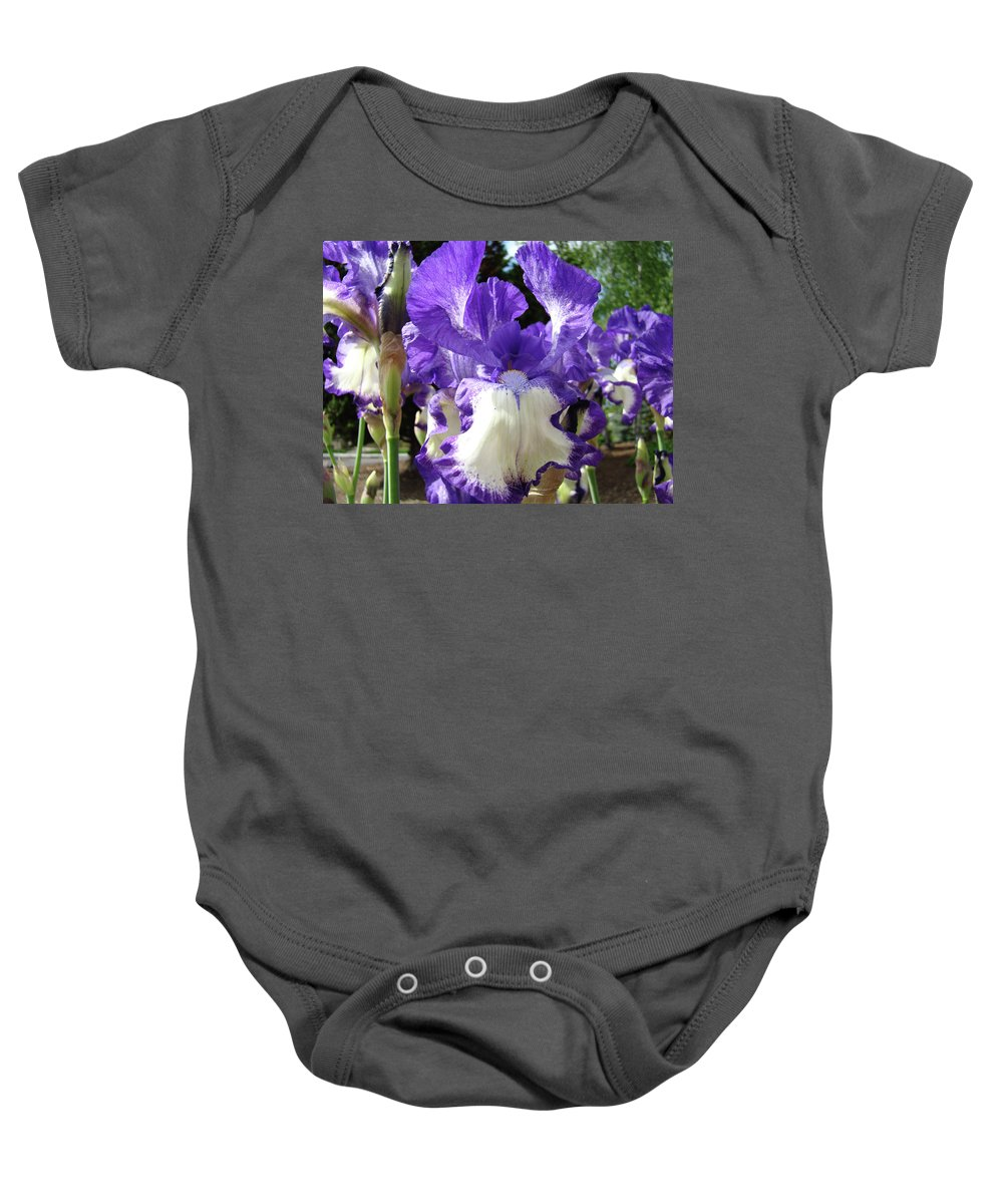 Floral Baby Onesie featuring the photograph Office Art Prints Irises Purple White Iris Flowers 39 Giclee Prints Baslee Troutman by Baslee Troutman