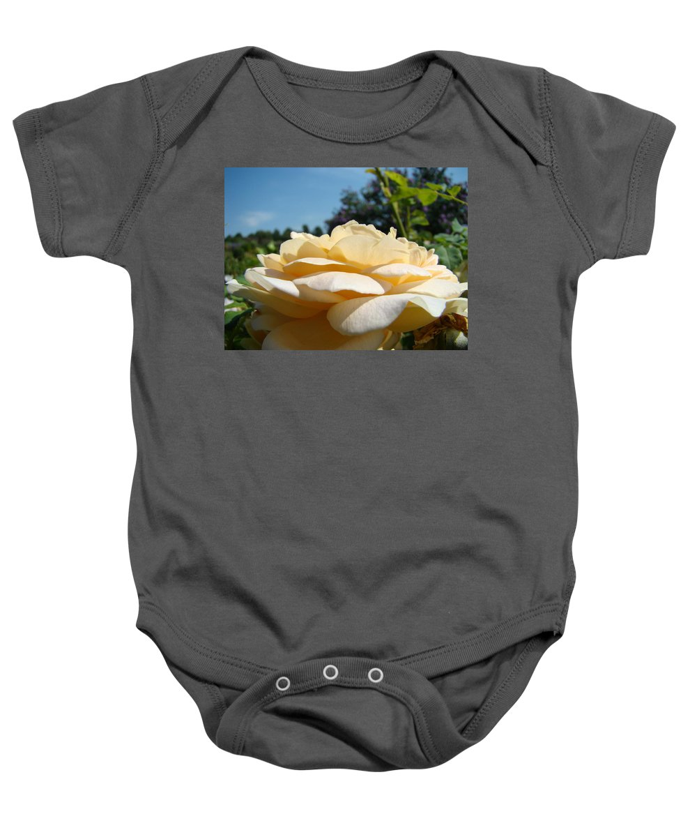 Rose Baby Onesie featuring the photograph Office Art Rose Landscape Peach Roses Flowers Giclee Baslee Troutman by Baslee Troutman