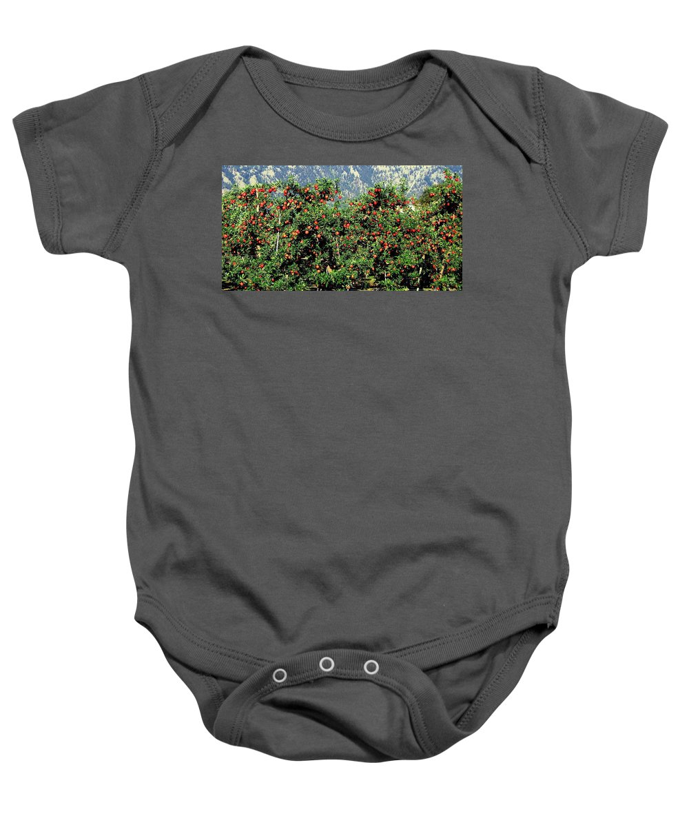 Apples Baby Onesie featuring the photograph Okanagan Valley Apples by Will Borden
