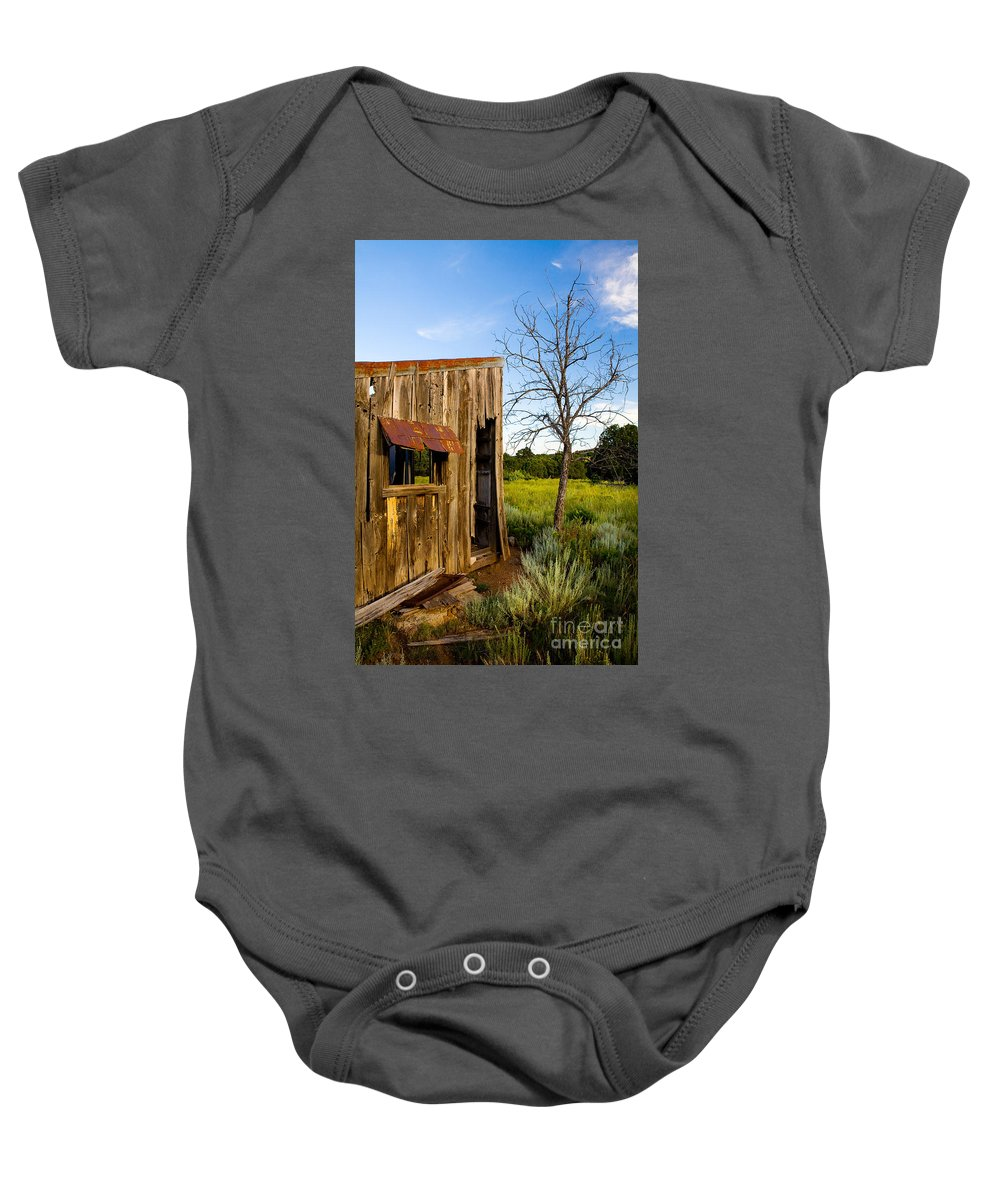 Barn Baby Onesie featuring the photograph Old Barn And Tree by Matt Suess
