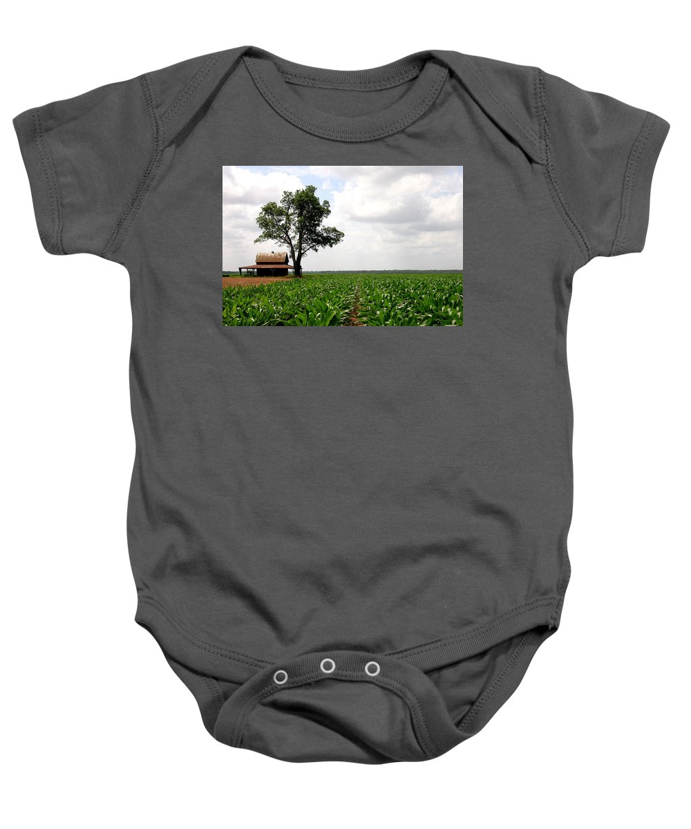 Barn Cajun Shack Sugar Cane Louisiana Live Oak Baby Onesie featuring the photograph Old Barn In Sugar Cane Field by Angie Covey