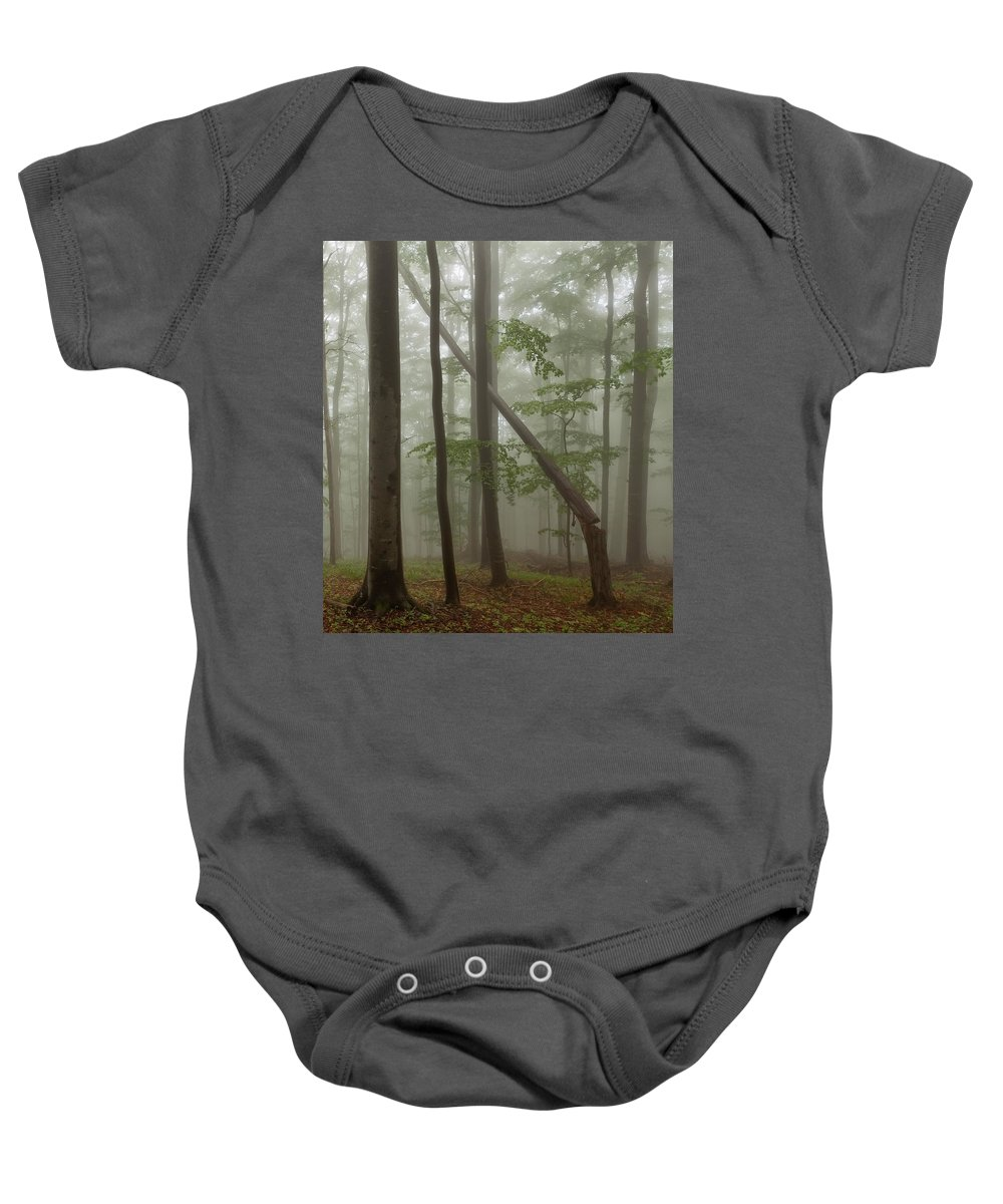 Beech Baby Onesie featuring the photograph Old Beech Forest by Evgeni Dinev