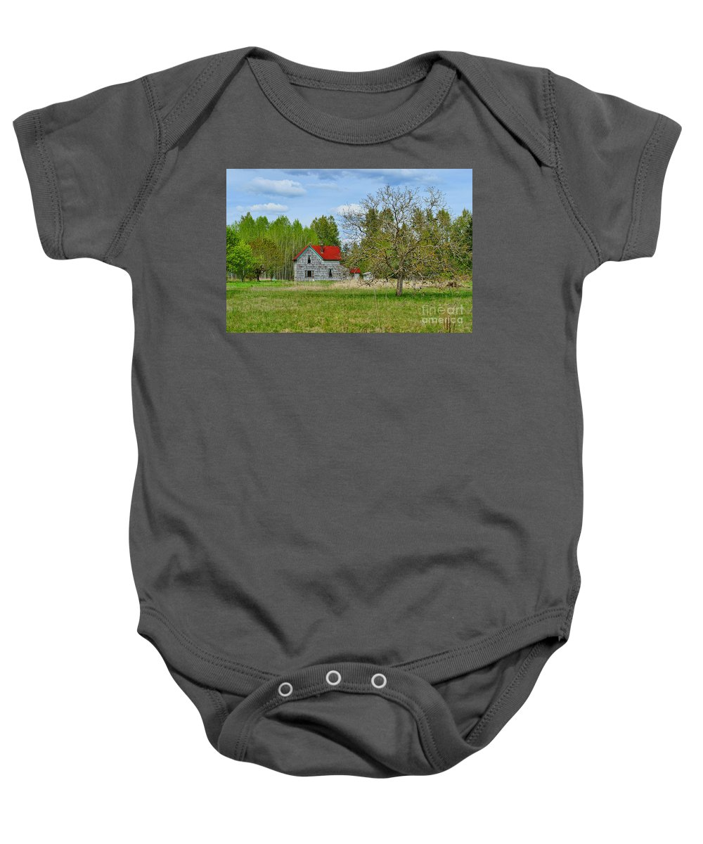Farms Baby Onesie featuring the photograph Old Farm House In Langley by Randy Harris