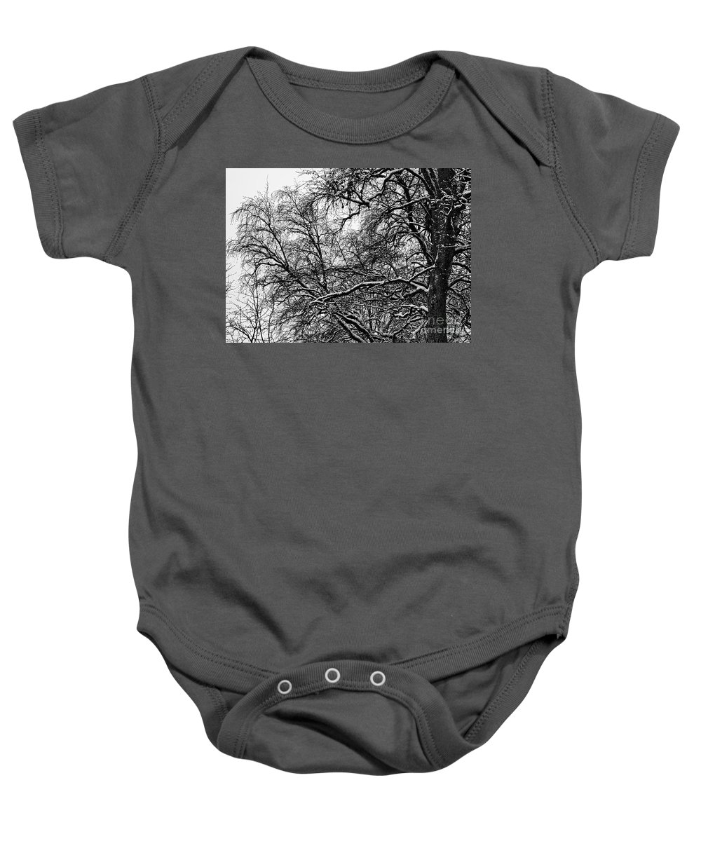 Birch Baby Onesie featuring the photograph Old Tree 6 by Esko Lindell