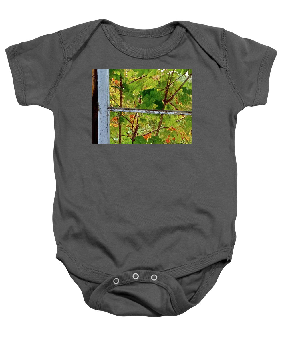 Buildings Baby Onesie featuring the photograph Old Window by Diana Hatcher