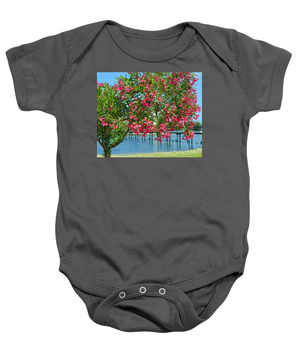Florida; Indian; River; Melbourne; Nerium; Oleander; Red; Pink; Flower; Bush; Shrub; Poison; Poisono Baby Onesie featuring the photograph Oleander On Melbourne Harbor In Florida by Allan Hughes