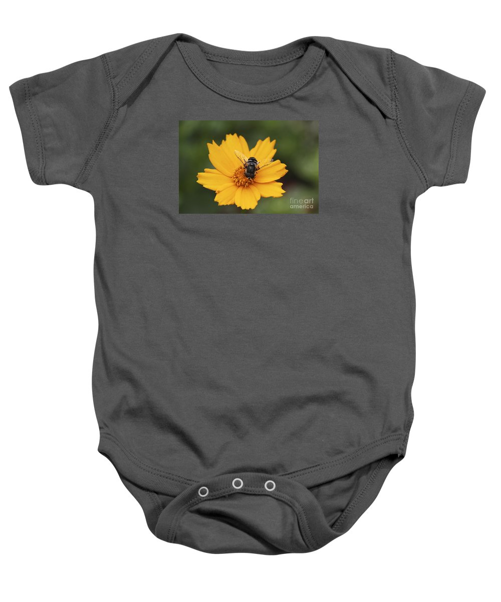 Macro Baby Onesie featuring the photograph On A Buttery Cloud by Deborah Benoit