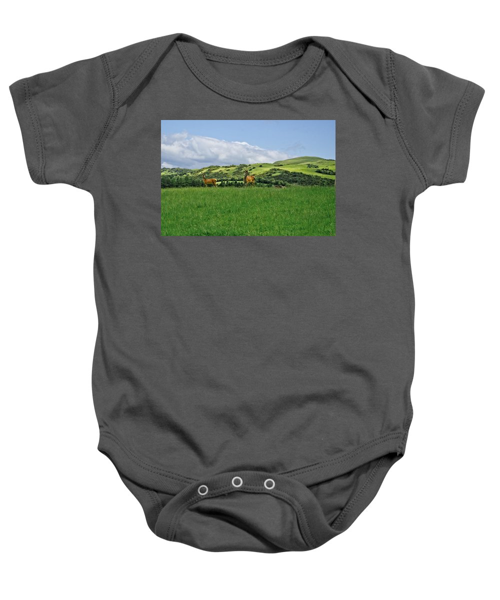Beecraigs Baby Onesie featuring the photograph On The Look-out. by Elena Perelman
