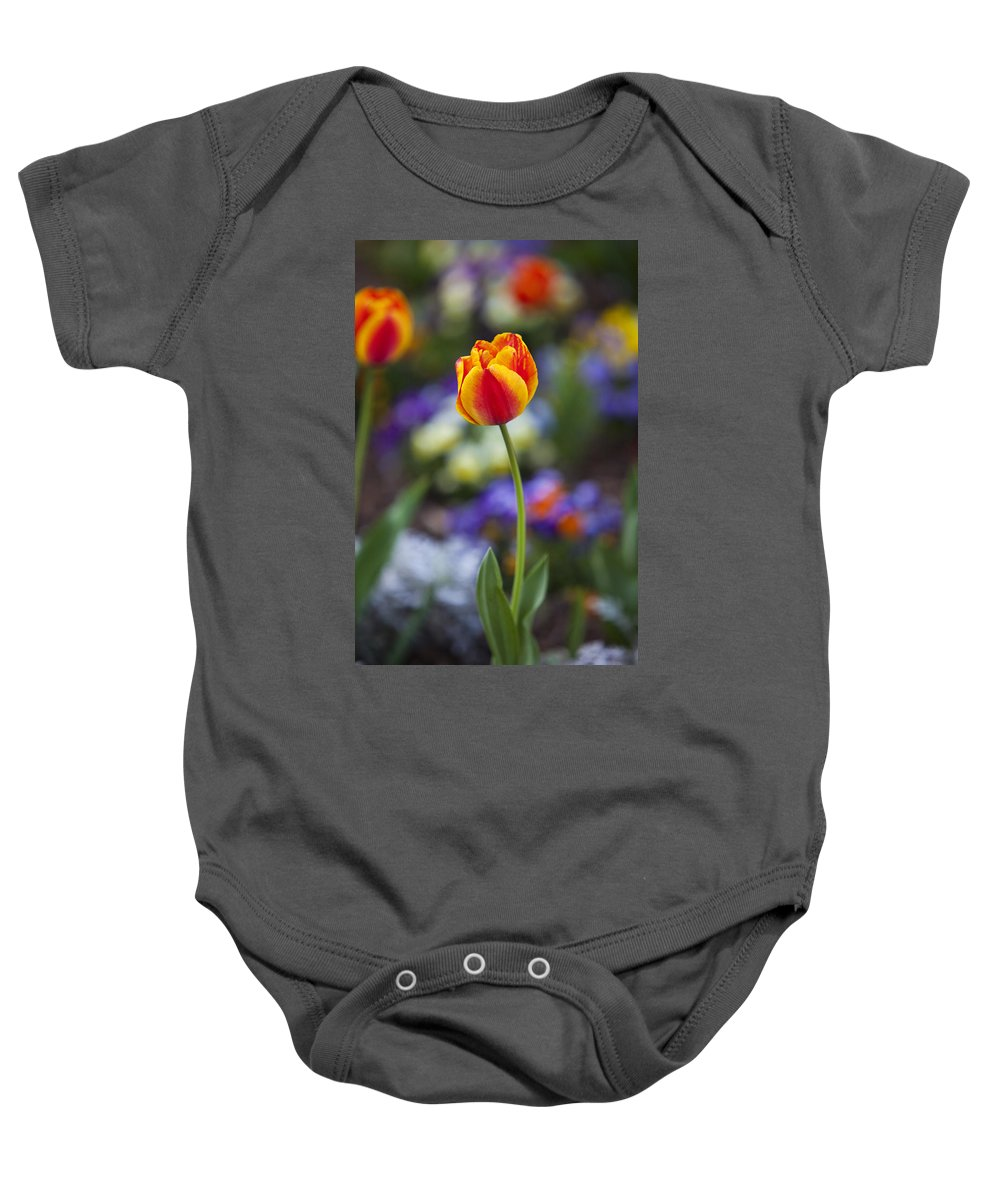 Flower Baby Onesie featuring the photograph Orange And Yellow Tulip by Amy Jackson
