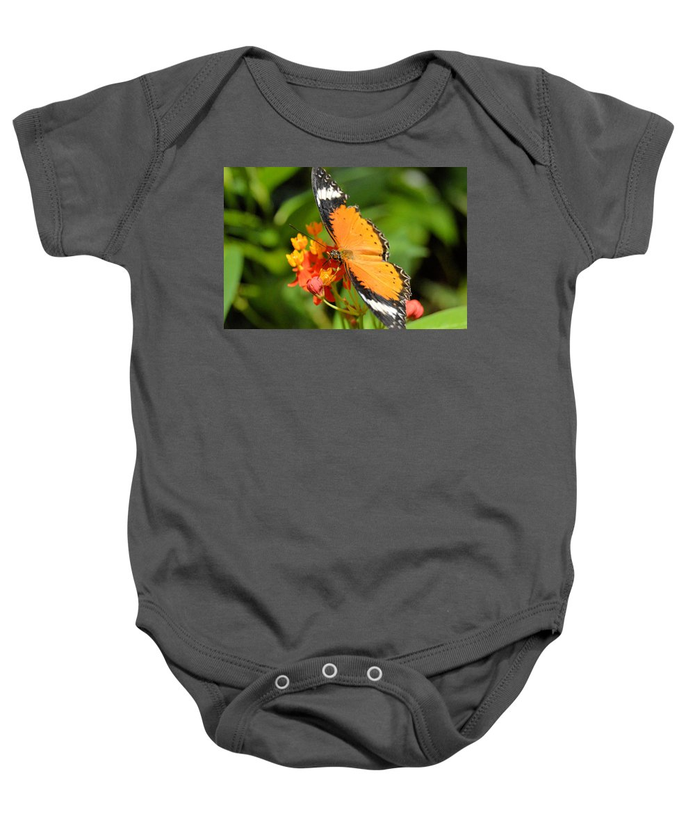 Flower Baby Onesie featuring the photograph Orange Butterfly by Wendy Fox