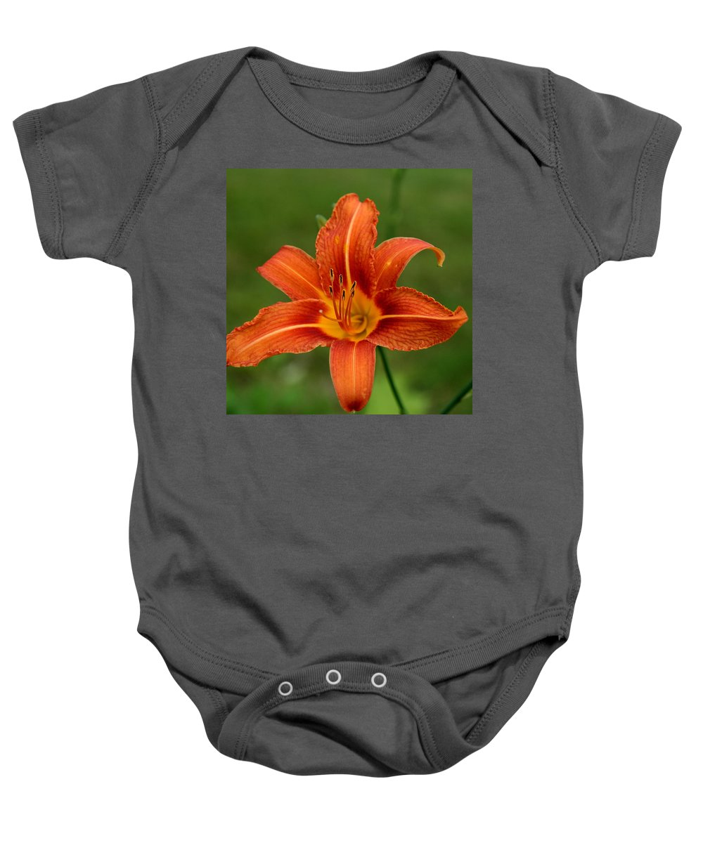Hemerocallis Fulva Baby Onesie featuring the photograph Orange Day Lily No.2 by Neal Eslinger