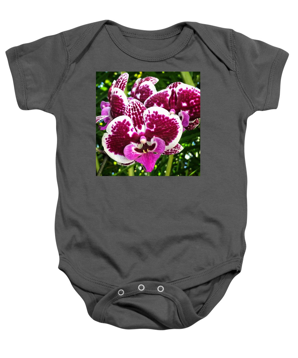 Baby Onesie featuring the photograph Orchid Hanging In Palms by Joe LeGrand