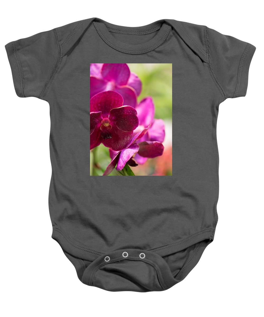 2016 Orchid Society Show Baby Onesie featuring the photograph Orchid Vanda Ratchaburi Waxy Red by JG Thompson