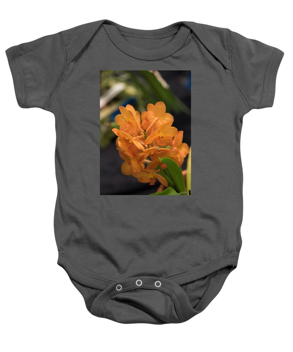 2016 Orchid Society Show Baby Onesie featuring the photograph Orchid Yip Sum Wah Orange by JG Thompson