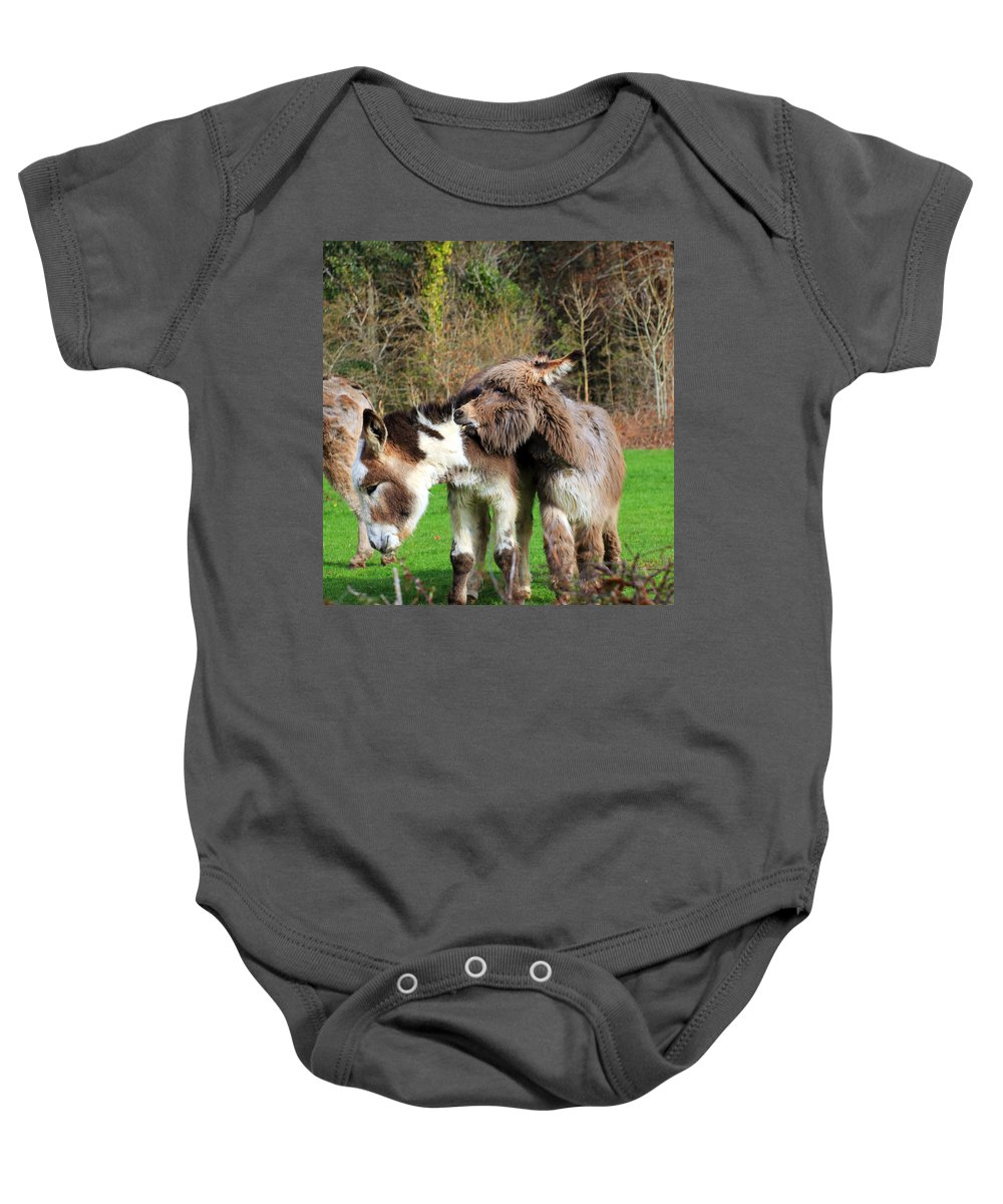 Biting Donkey Baby Onesie featuring the photograph Ouch by Jennifer Robin