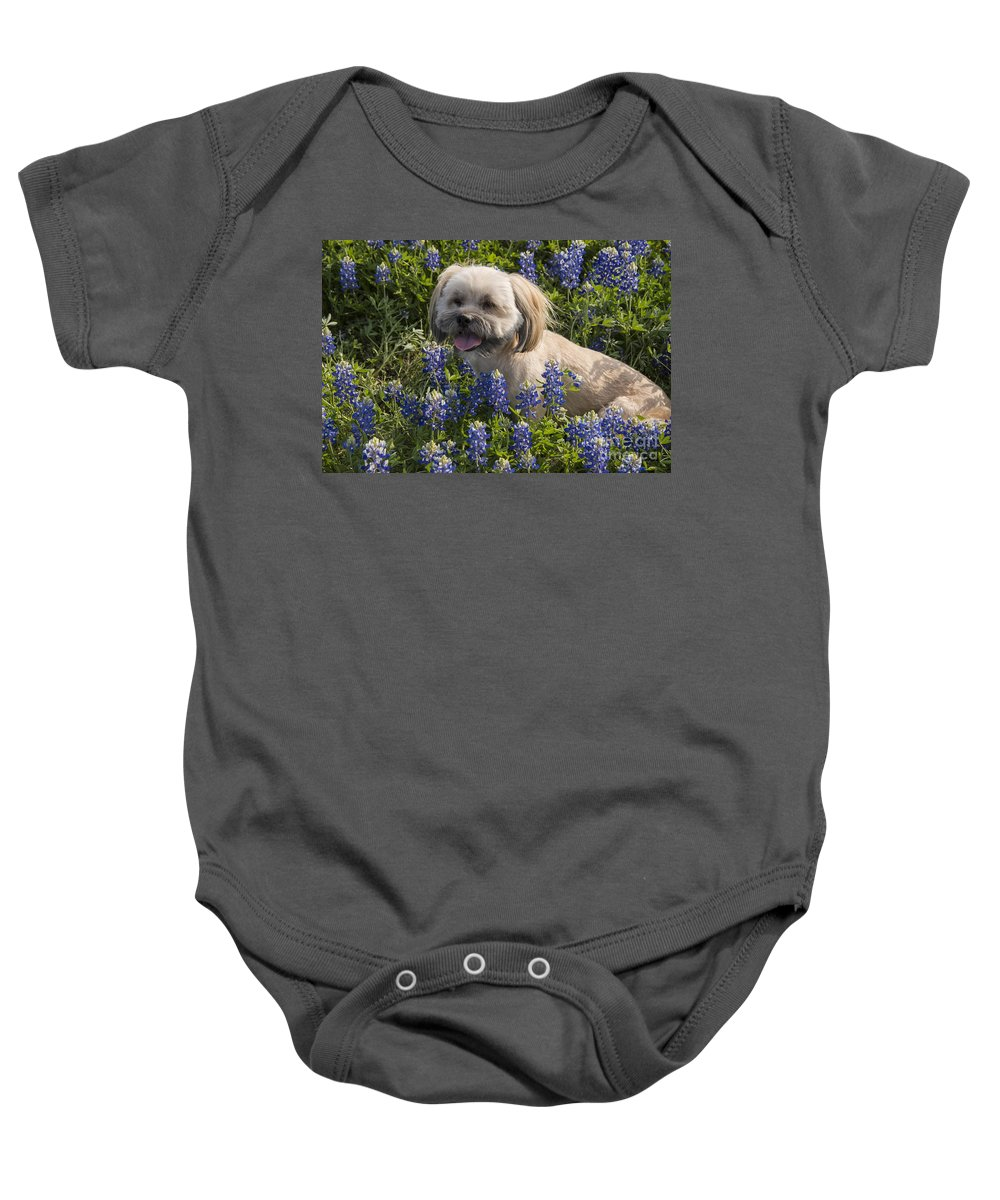 Muleshoe Bend Recreation Area Texas Bluebonnet Bluebonnets Flower Flowers Bloom Blooms Buddy Dog Dogs Animal Animals Creature Creatures Spring Baby Onesie featuring the photograph Our Bud In The Bonnets by Bob Phillips