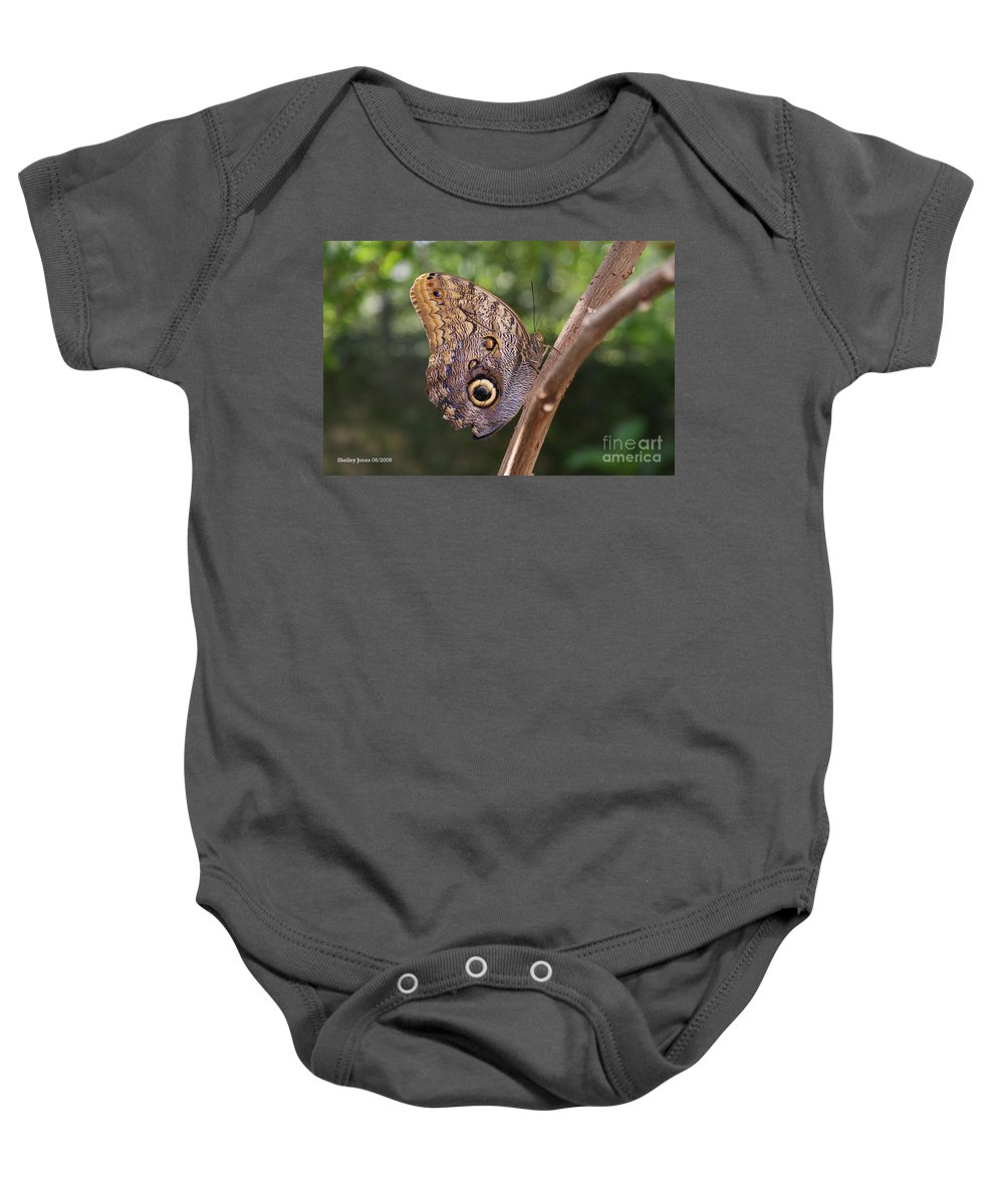 Butterfly Baby Onesie featuring the photograph Owls don't always have feathers by Shelley Jones
