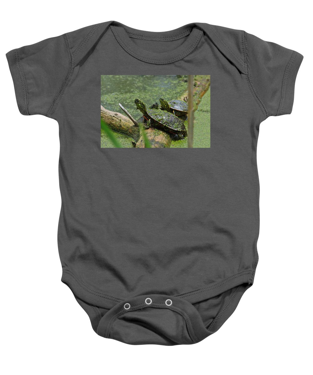 Paint Baby Onesie featuring the photograph Painted Turtles by Karon Melillo DeVega