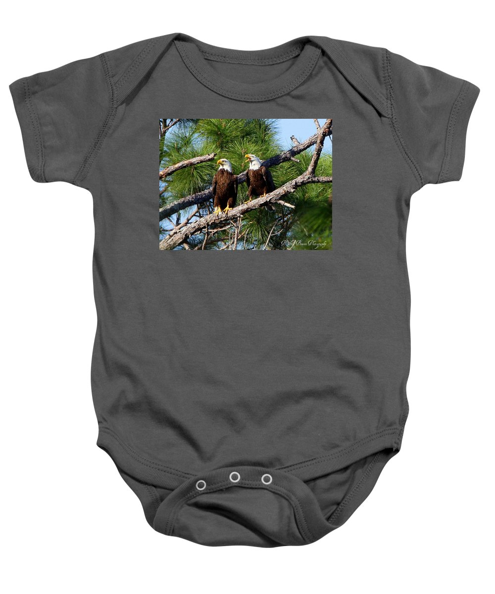 American Bald Eagle Baby Onesie featuring the photograph Pair Of American Bald Eagle by Barbara Bowen