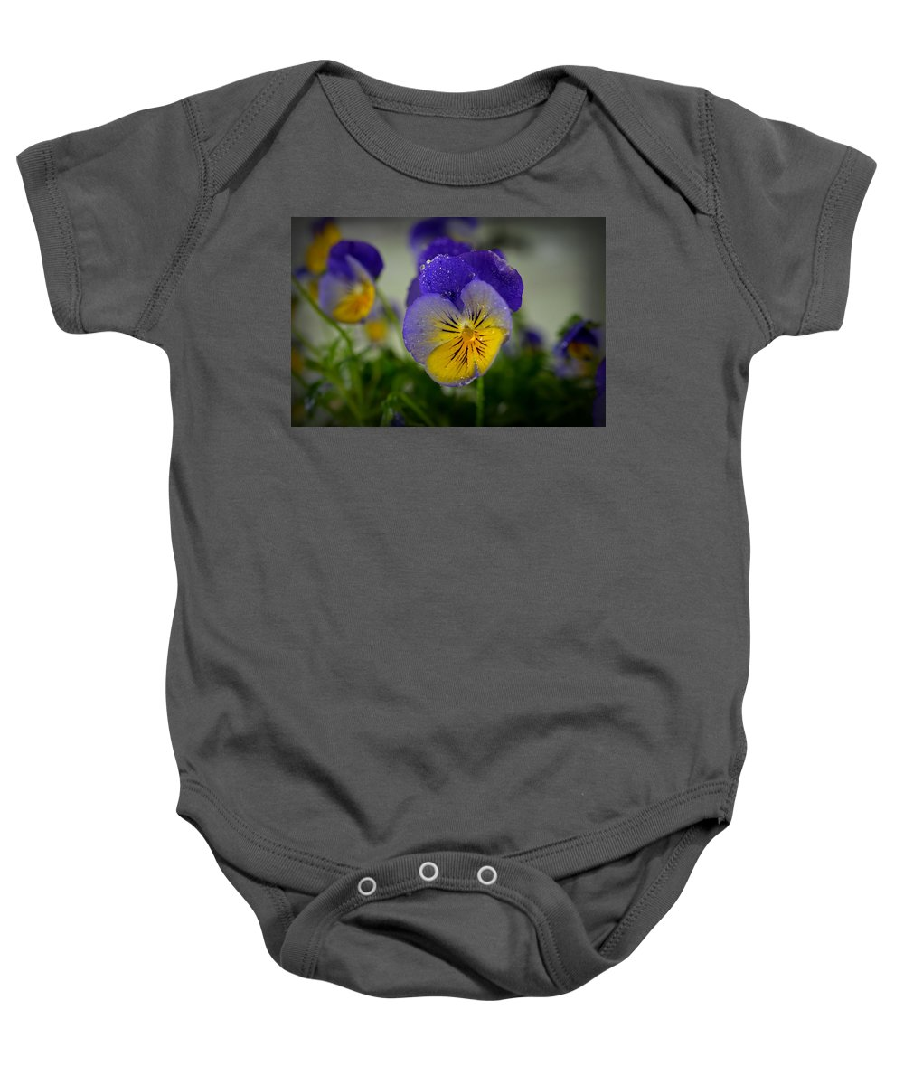 Pansy Baby Onesie featuring the photograph Pansy 0002 by Paul Gavin