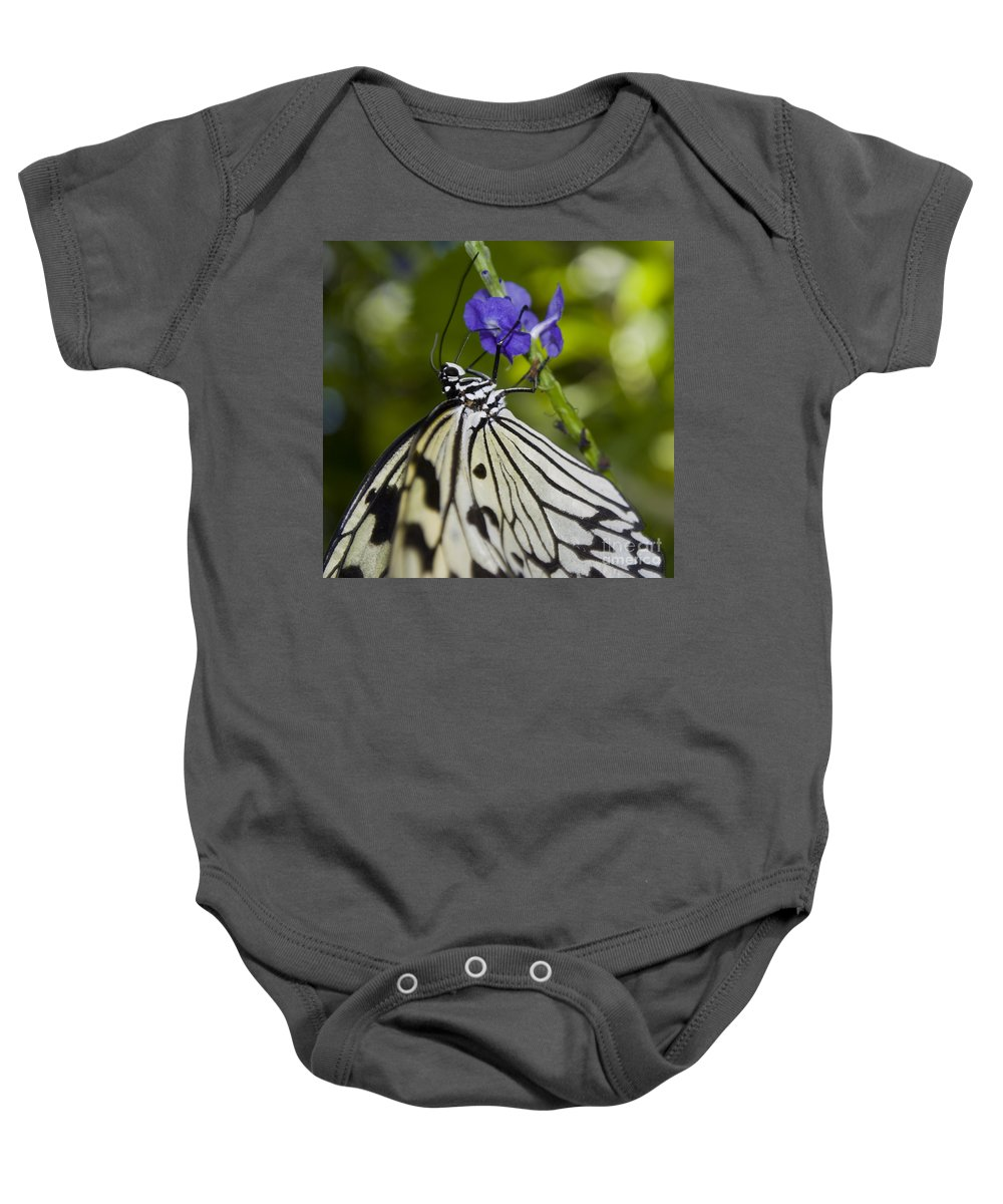 Paper Kite Butterfly Baby Onesie featuring the photograph Paper Kite Butterfly by Heather Applegate