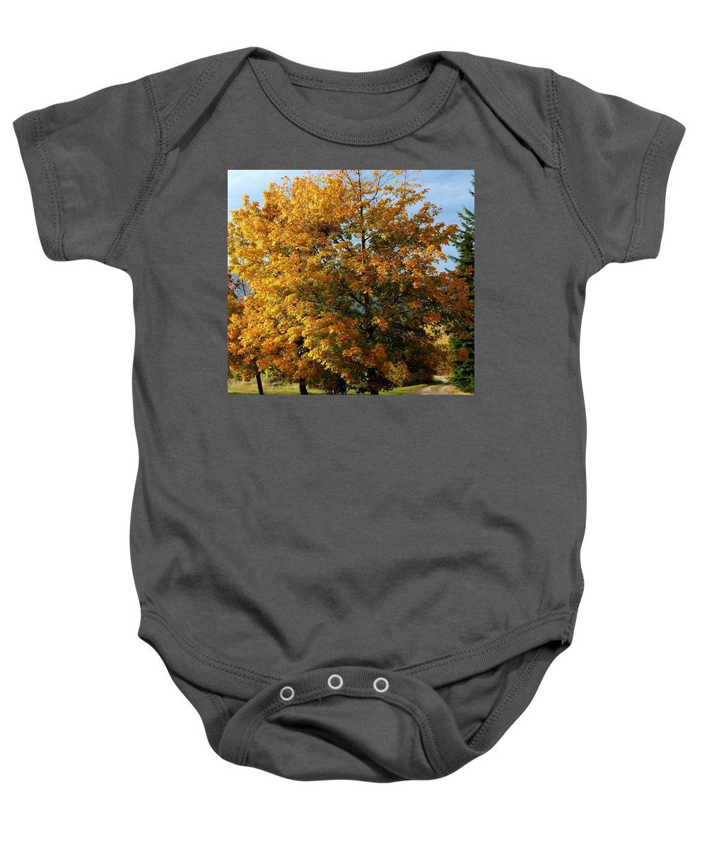 Country Road Baby Onesie featuring the photograph Peaceful Country Road by Will Borden