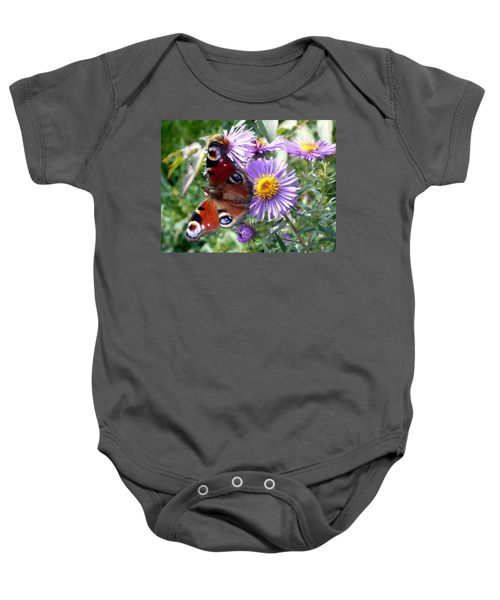 Peacock Baby Onesie featuring the photograph Peacock With Bee by Helmut Rottler