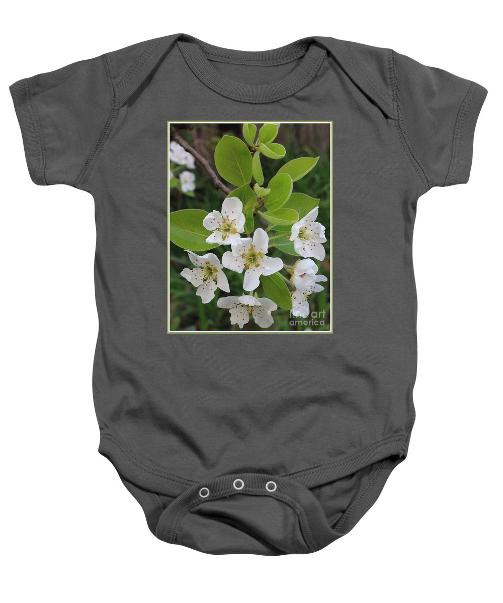 Pear Baby Onesie featuring the photograph Pear Blossoms In Full Bloom by Dora Sofia Caputo Photographic Design and Fine Art
