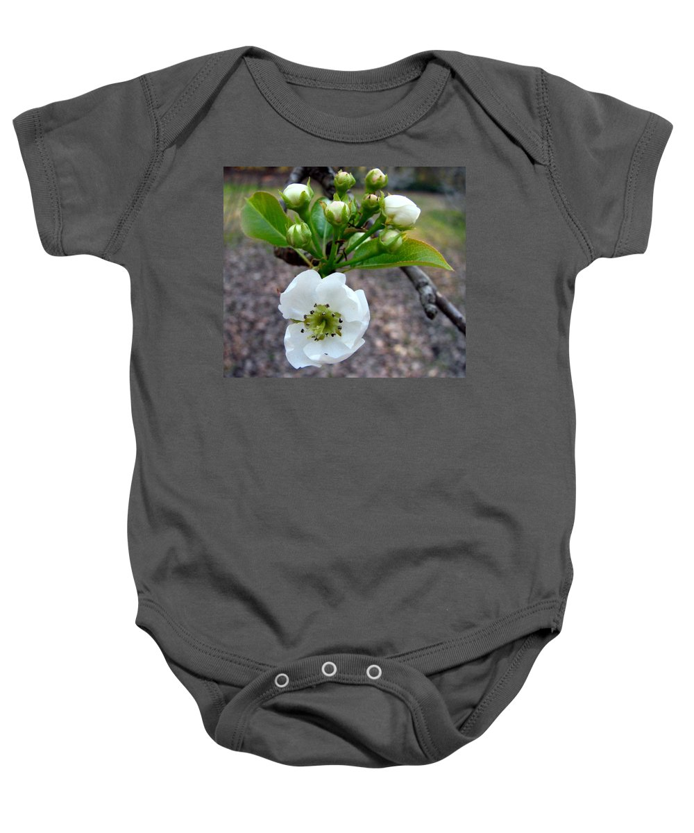 Pear Tree Blossum Baby Onesie featuring the photograph Pear Tree Blossom 3 by J M Farris Photography