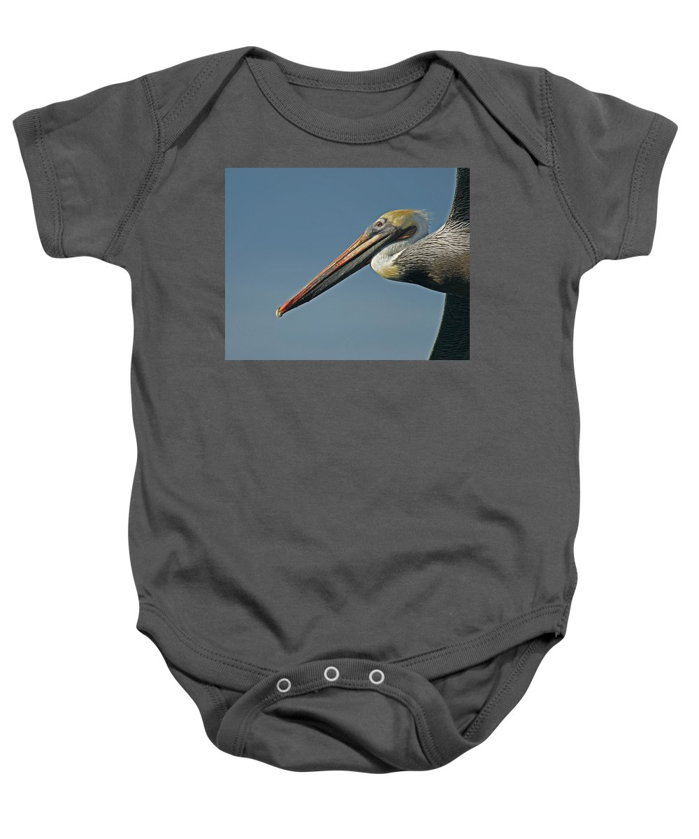 Animals Baby Onesie featuring the photograph Pelican Upclose by Ernie Echols