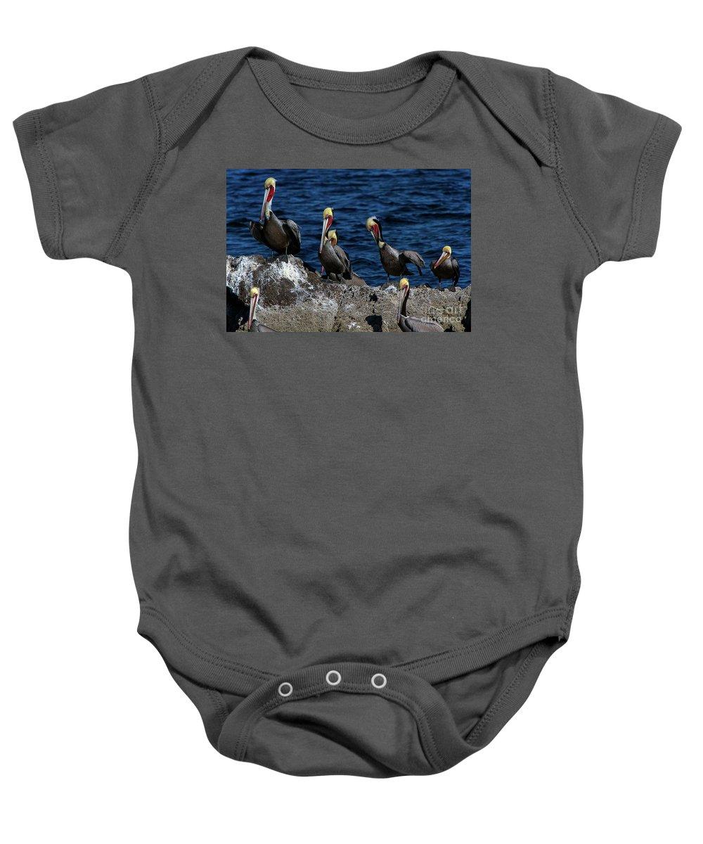 Azamara Baby Onesie featuring the photograph Pelicanos by Doug Sturgess