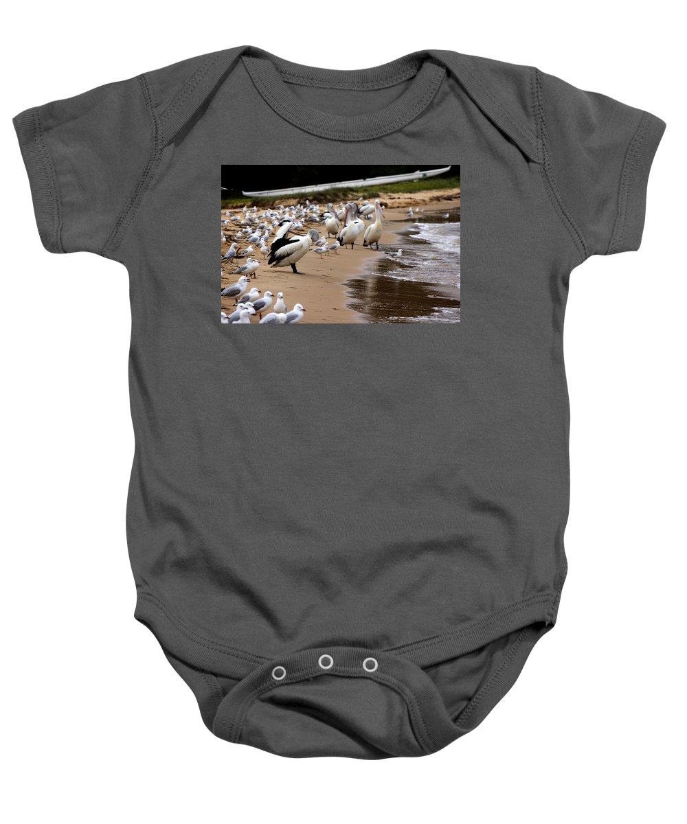 Australia Baby Onesie featuring the photograph Pelicans At Pearl Beach 1.0 by Giro Tavitian