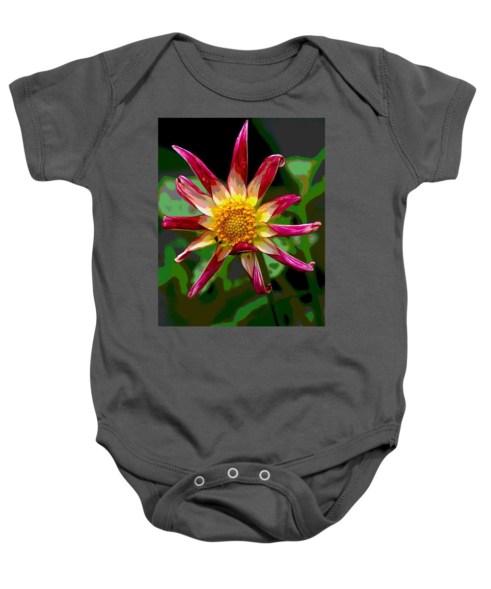 Flowers Baby Onesie featuring the photograph Peppermint Sunburst 2 by Ben Upham III