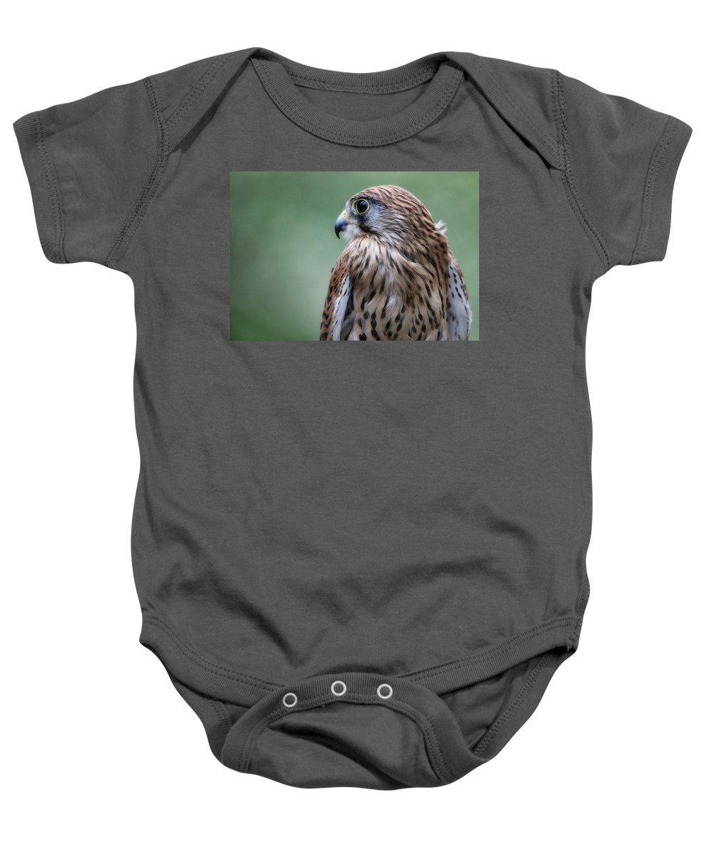 Outdoor Baby Onesie featuring the photograph European Kestrel by James Kenning