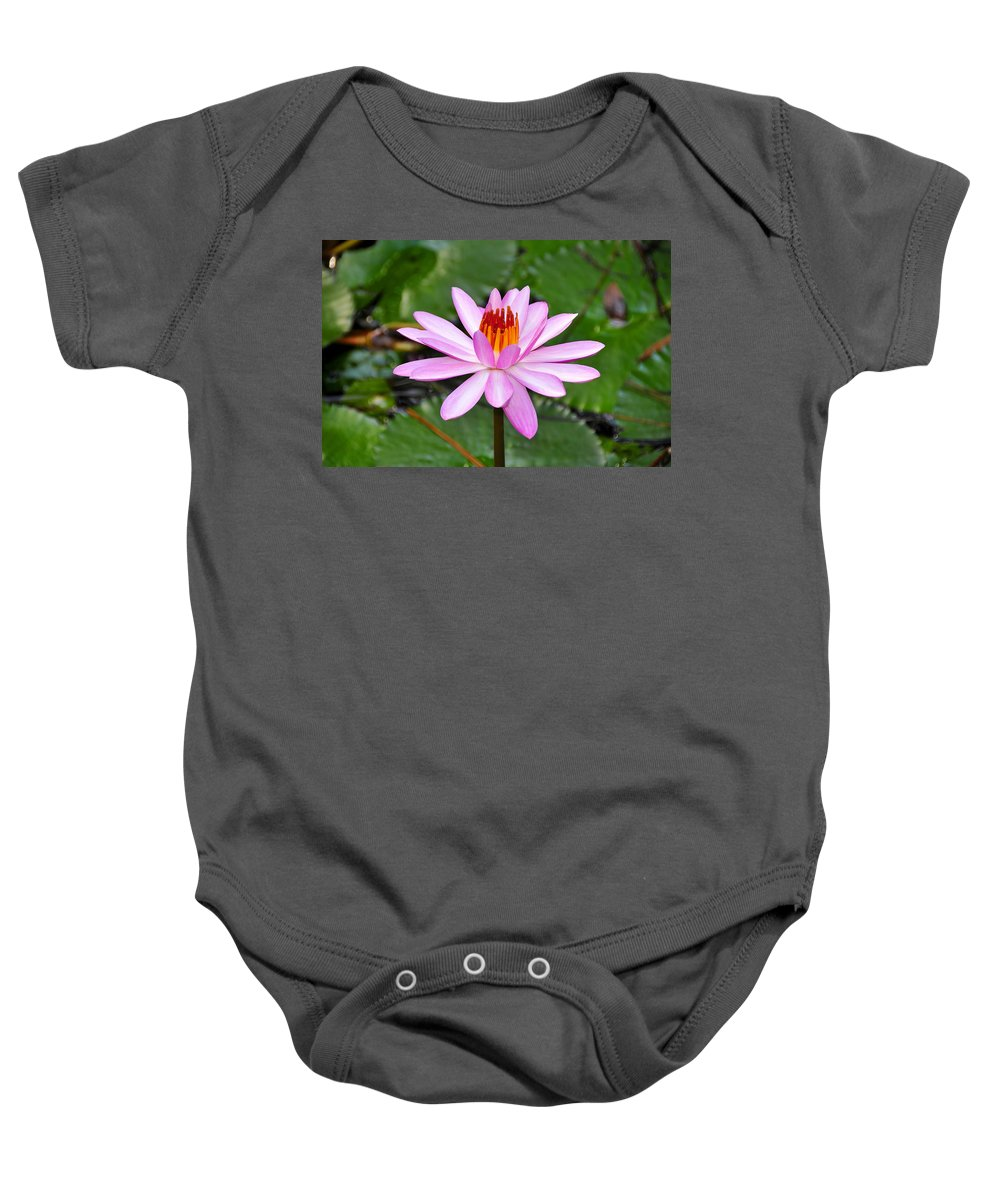 Flower Baby Onesie featuring the photograph Perfectly Pink by David Lee Thompson