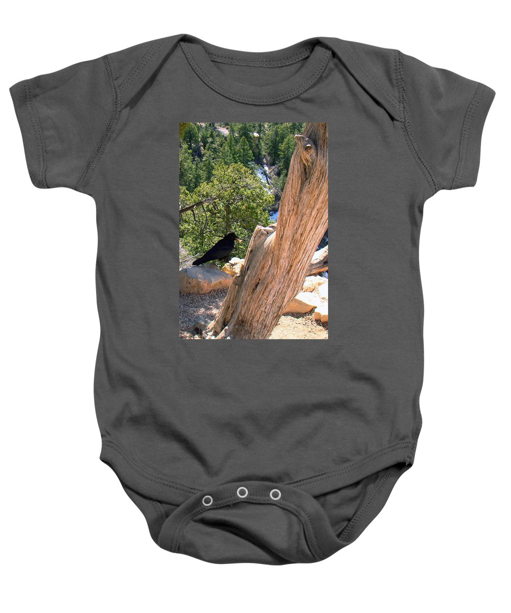 Grand Canyon Baby Onesie featuring the photograph Petrified Raven At Grand Canyon by Merja Waters
