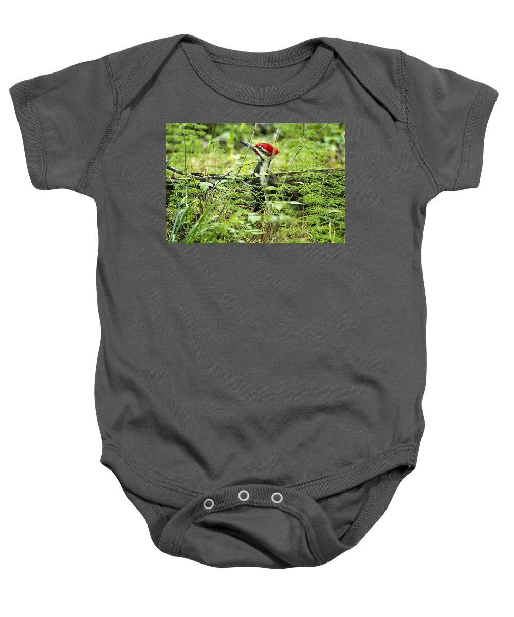 Woodpecker Baby Onesie featuring the photograph Pileated Woodpecker On The Ground No. 1 by Belinda Greb