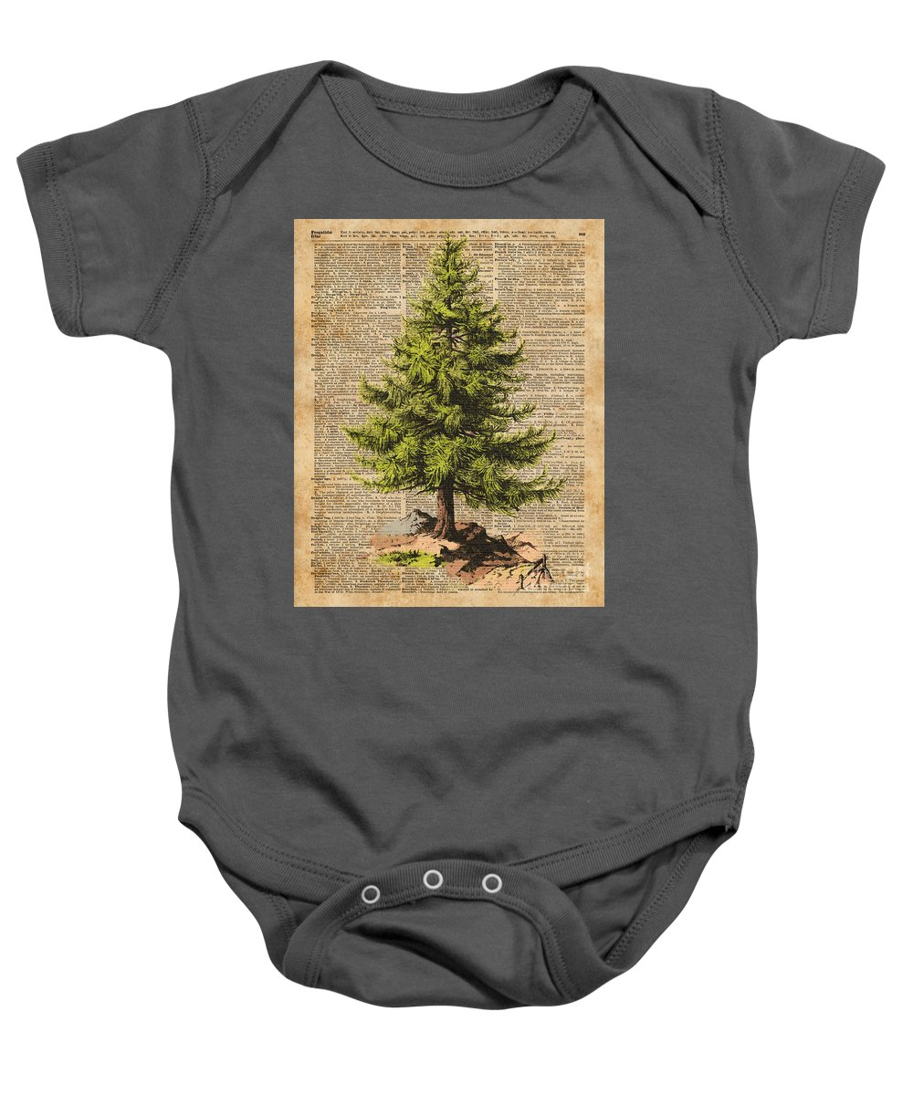 Forest Baby Onesie featuring the digital art Pine Tree,cedar Tree,forest,nature Dictionary Art,christmas Tree by Anna W