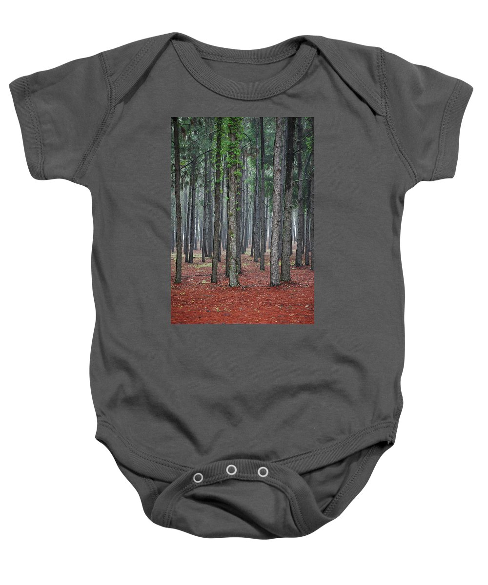Pine Trees Baby Onesie featuring the photograph Pine Trees by Robert Meanor