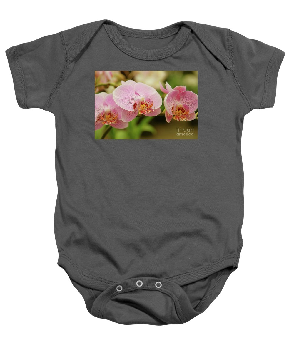 Orchids Baby Onesie featuring the photograph Pink And Beautiful by Susanne Van Hulst