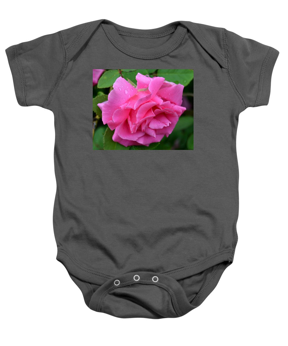 Rose Baby Onesie featuring the photograph Pink Rose In Profile by Belinda Stucki