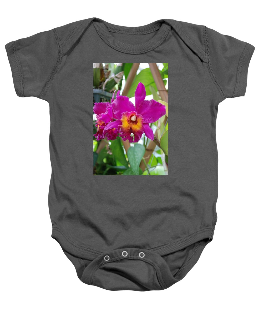 Macro Baby Onesie featuring the photograph Pinkishyellow Orchid by Rob Hans