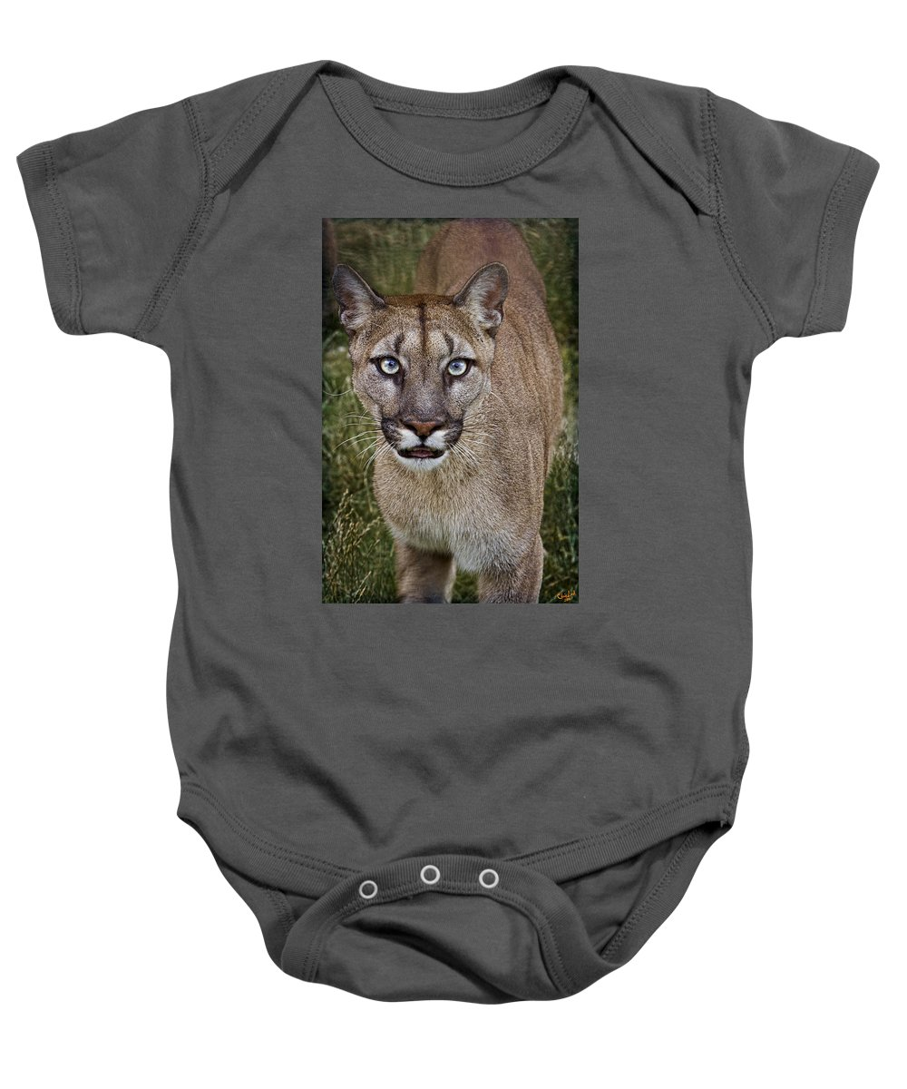 Puma Baby Onesie featuring the photograph Please Stroke Me by Chris Lord